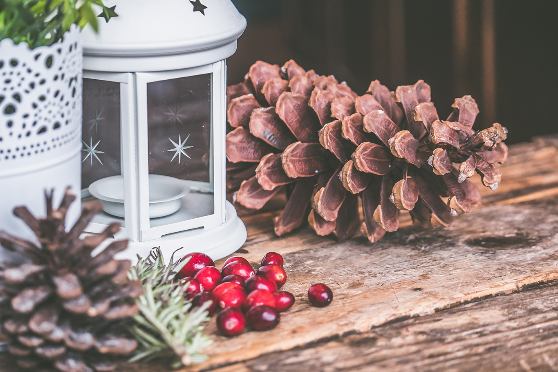 candle-lantern-celebration-christmas-699372.jpg