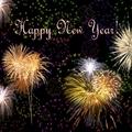 Boldog Új Évet! Happy New Year! Glückliches Neu Jahr! Omedetou 2010!