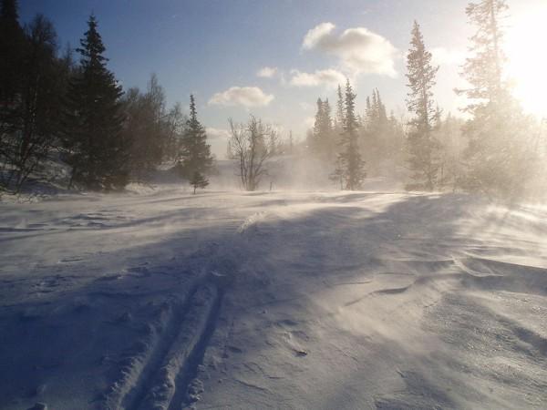 Snowstorm_k.jpg