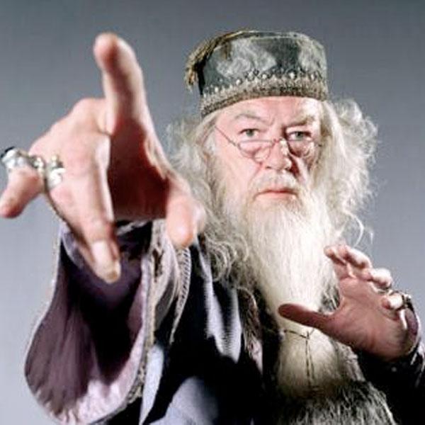 wiz_dumbledore.jpg
