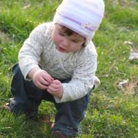 Zelk Zoltán: A kis kertész