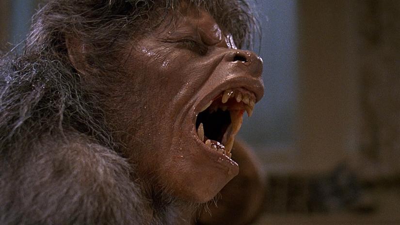 an_american_werewolf_in_london_35th_anniversary.jpg