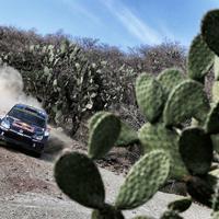 WRC Mexikó Rally 2015