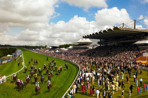 gloriousgoodwood3.jpg