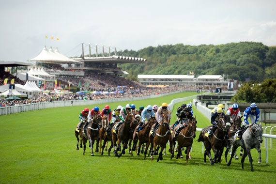 gloriousgoodwood5.jpg