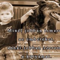 A kutya és az ember kapcsolata