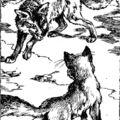 Sebzett farkasok
