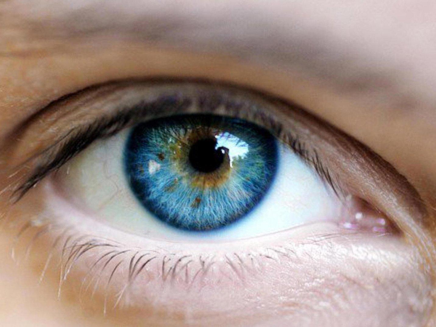 a-cuantos-frames-puede-ver-el-ojo.jpeg