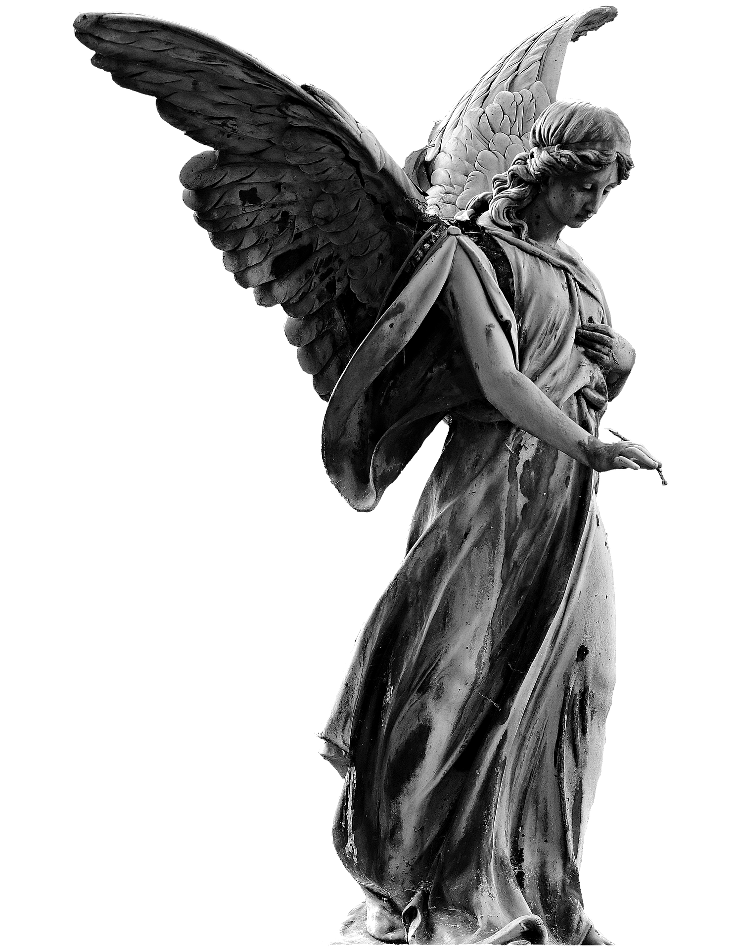 angel-2636961_1920_1.png