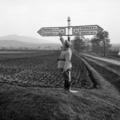 85 éve számozzuk a magyar utakat