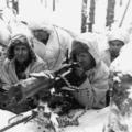 A téli háború, magyar önkéntesek és Simo Häyhä