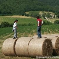 Vagliagli és a levendulamezők útja