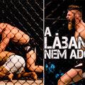 TD|MMA: Palhares ezúttal csúnyán pórul járt lábvadászat közben