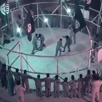 TD|BULVÁR: Ketrecben edzenek az Iszlám Állam újoncai (videó)