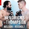 TD|MMA: UFC Fight Night: Hendricks vs Thompson mérkőzések videói