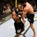 TD|MMA: Húsz fotón a UFC húsz legnagyobb kiütése (galéria)