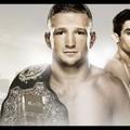 TD MMA: Út az oktagonig: Dillashaw vs. Barao 2