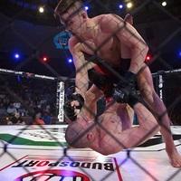 MMA Revolution – Összefoglaló