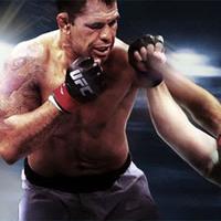 UFC Fight Night Abu Dhabi: Nogueira vs Nelson eredménye