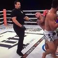 TD KICKBOX: Hisaki Kato már megint kiütötte Joe Schillinget, már megint elképesztő módon (frissítve)