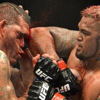 Fejben dől el - Fejsérülések az MMA-ban