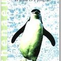 """""""A pingvin én vagyok"""""""