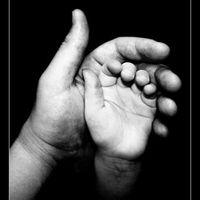 ...Csodálatos kezesség...