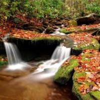 Forró ősz (avagy összeomlás vagy sem a piacokon)