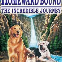Úton hazafelé (Homeward Bound: The Incredible Journey, 1993)
