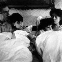 Szamárköhögés (1986)