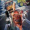 Úton hazafelé 2. (Homeward Bound II: Lost in San Francisco, 1996)
