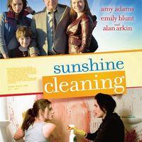 Tiszta napfény (Sunshine Cleaning, 2008)