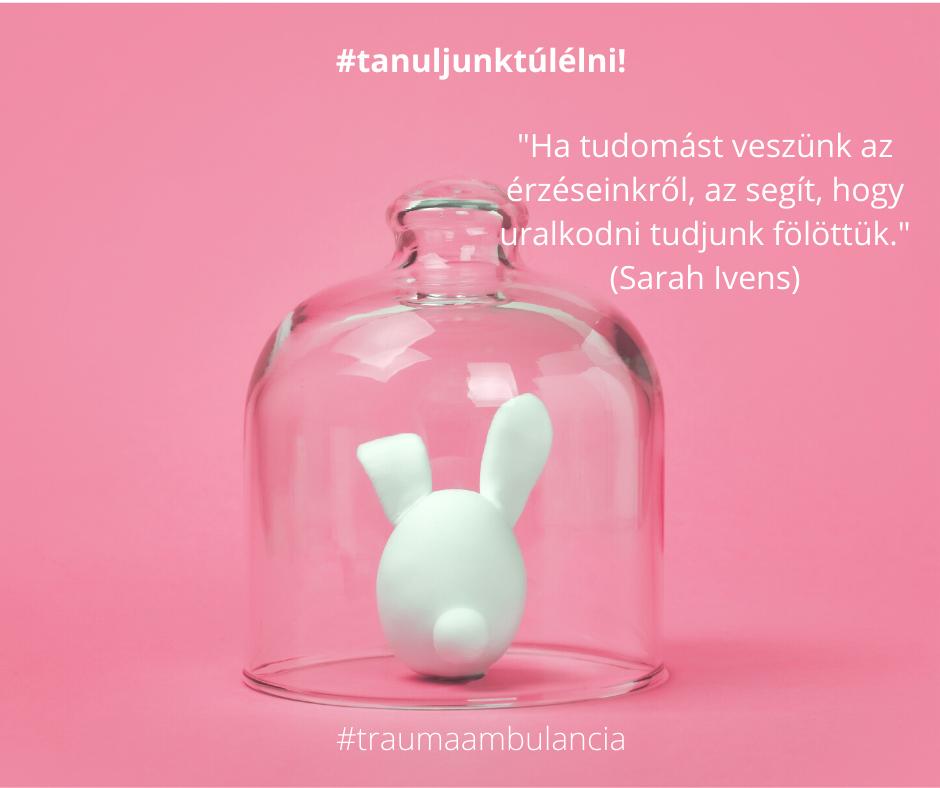 tanuljunk_tulelni_negativ_erzesek.png