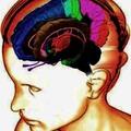 Depresszió és pánikbetegség - CBT