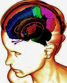 kognitiv-veselkedesterapia-gyakorlatok.jpg