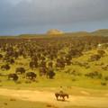 Lennél lovasfutár a vadnyugaton?