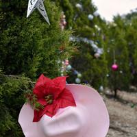 Karácsonyi élmények Texas-ban