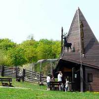 Séta a Budakeszi Vadasparkban/Wildlife Park in Budakeszi