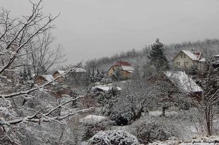 Helló tél, helló Veres!/Hello winter!