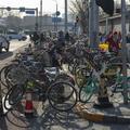 Peking 2. nap - Tiltott Város és sok más