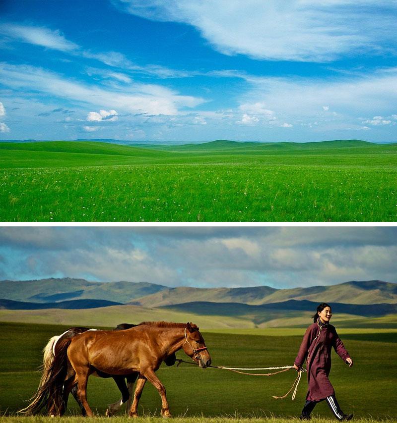 mongolian-manchurian-grassland.jpg