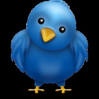 Jó tanácsok, ha cégünknek tweetelünk