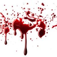 Vér tapad egy torrent fájlhoz