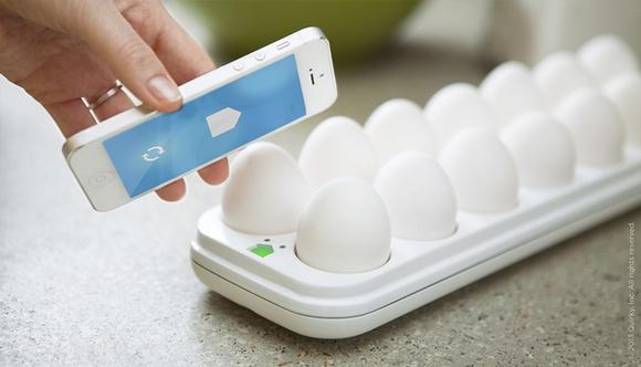 eggminder2.jpg