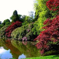 """Lancelot """"Capability"""" Brown, a táj- és kertmágus"""