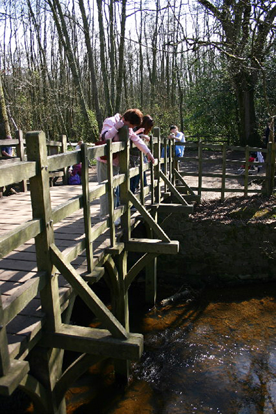 pooh_sticks_bridge_ashdownforest.jpg