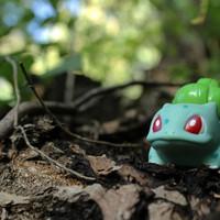 Emberkísérlet: Egy hét a Pokémon Góval