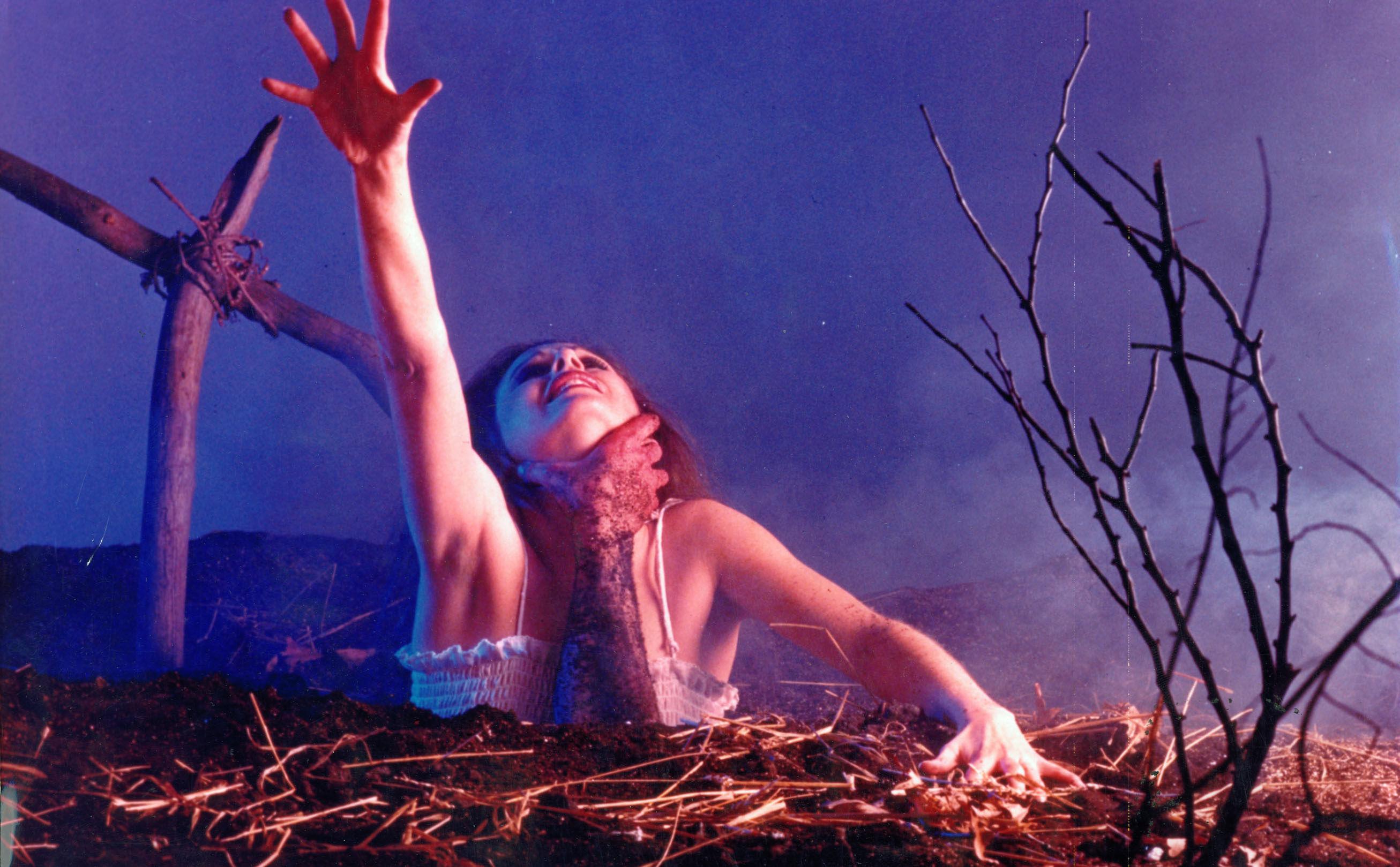 the-evil-dead-1981-522659.jpg