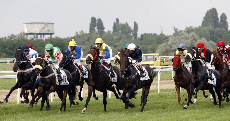 magyar-derby-4708.jpg