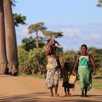 Mit tanulhatunk a gyermeknevelésről egy afrikai törzs tagjaitól?